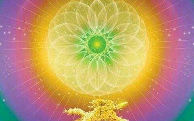 Reconectar con el deseo amoroso de ayudar al otro para que sea quien realmente es; parte V.