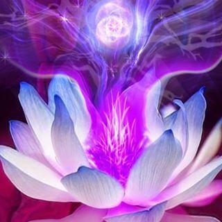 Meditación 7mo Chakra  armonizar  Corona
