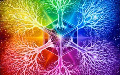Activar la abundancia que habita en nosotros; parte III.